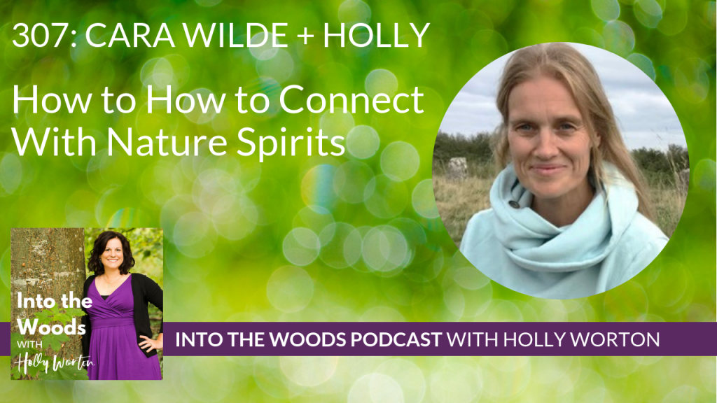 307 Cara Wilde + Holly ~ How to Connect With Nature Spirits